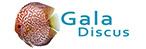 Gala Discus